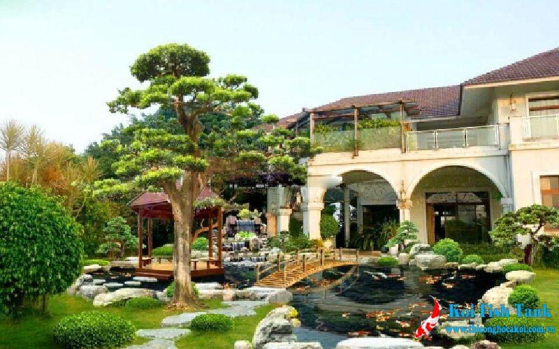 Sân vườn hồ cá koi tại Bình Định
