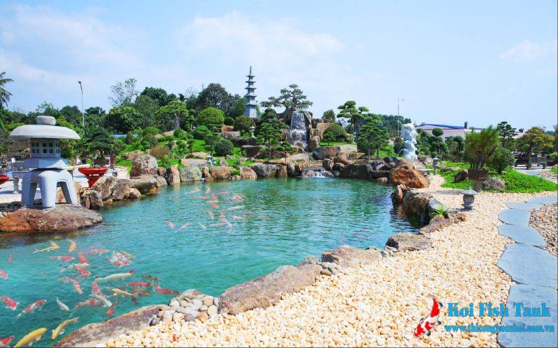 Một hồ cá koi sau khi thi công tại Hà Nội