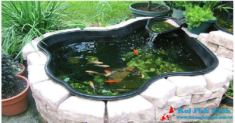 Mẫu hồ cá Koi mini đẹp