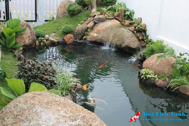 Thiết kế hồ cá koi đẹp giá rẻ