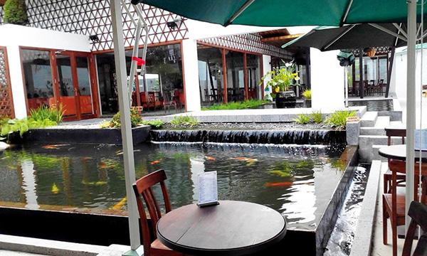 Thiết kế hồ cá Koi quán cafe