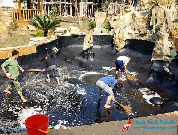 Kinh nghiệm bảo dưỡng hồ cá Koi