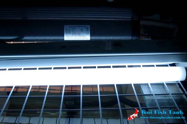 Đèn UV cho hồ cá koi