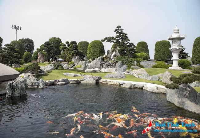 Hồ cá koi làm tăng giá trị bất động sản