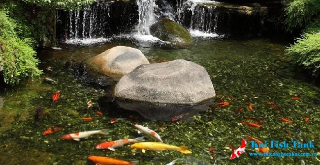 Tiểu cảnh cho hồ cá