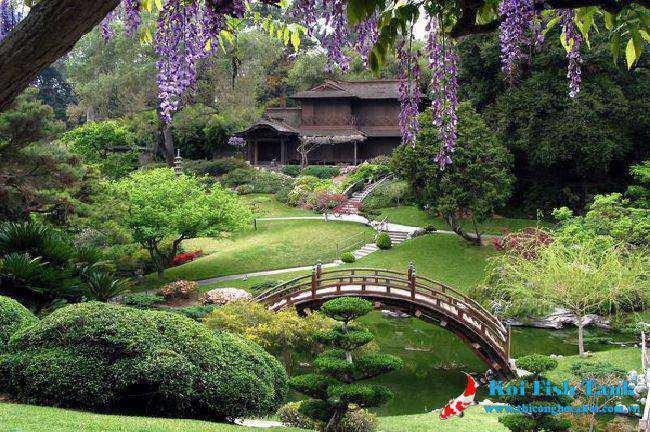 Thiết kế sân vườn đẹp và những điều bạn cần biết