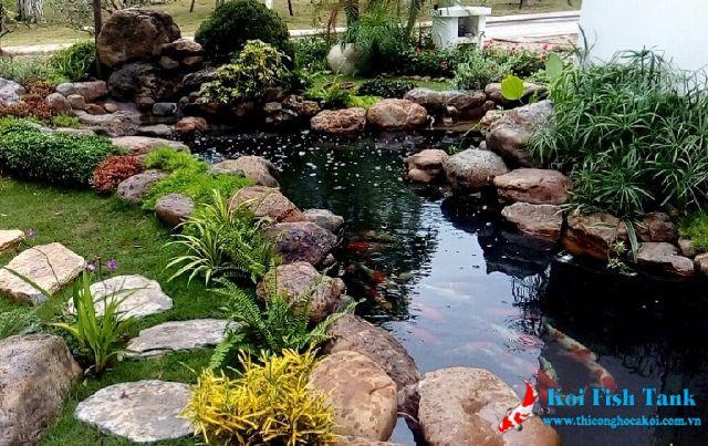 Trang trí đá cho hồ cá Koi có công dụng gì?