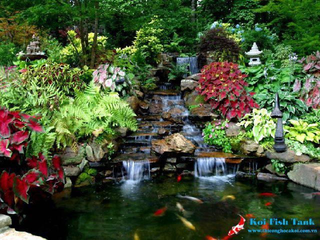 Sự kết hợp hài hòa giữa hồ cá koi và cây xanh