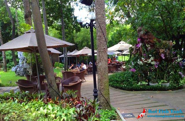 Chăm sóc quán cà phê sân vườn luôn xanh tốt